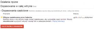 Witryna zaatakowana przezhakerów