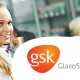 GLAXO SMITH KLINE Performance Media