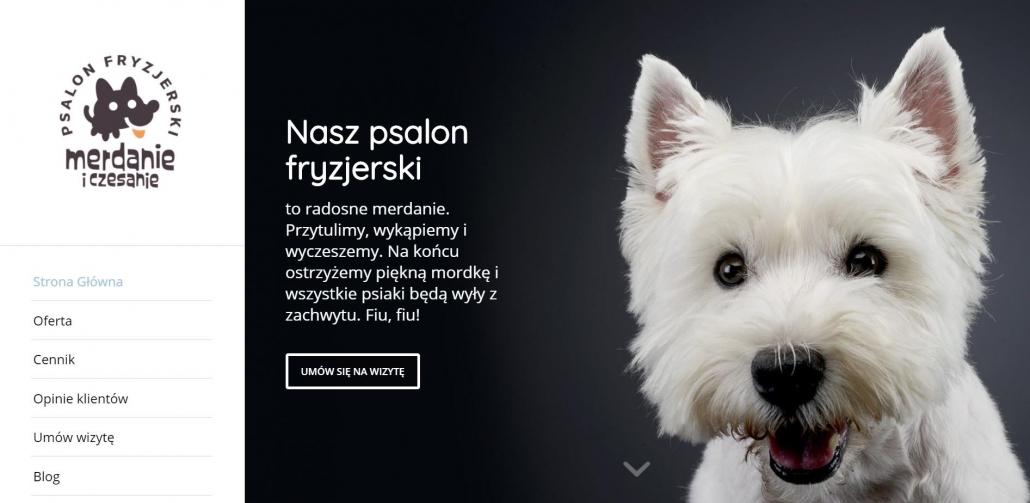 Źródło: Strona główna https://merdanieczesanie.pl/