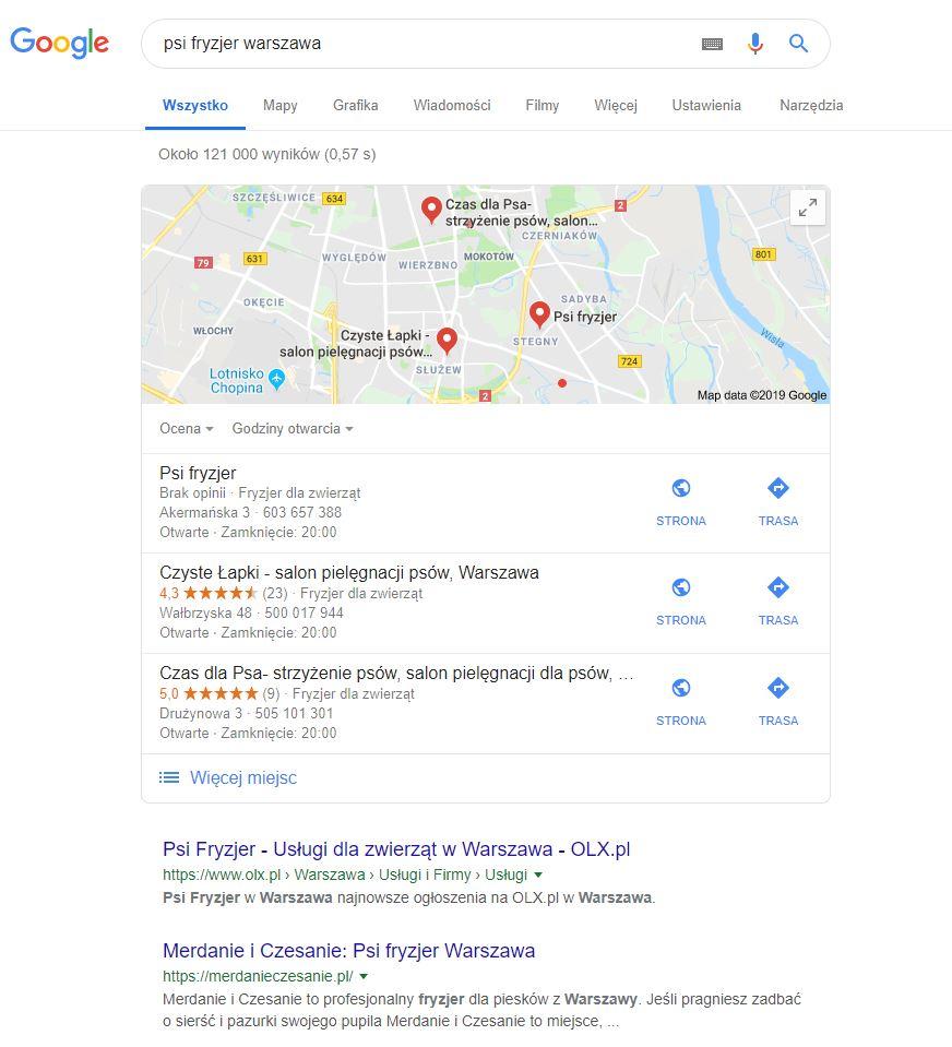 """Źródło: Screen zwyników wyszukiwania nazapytanie """"psi fryzjer warszawa"""", 23.01.2019"""