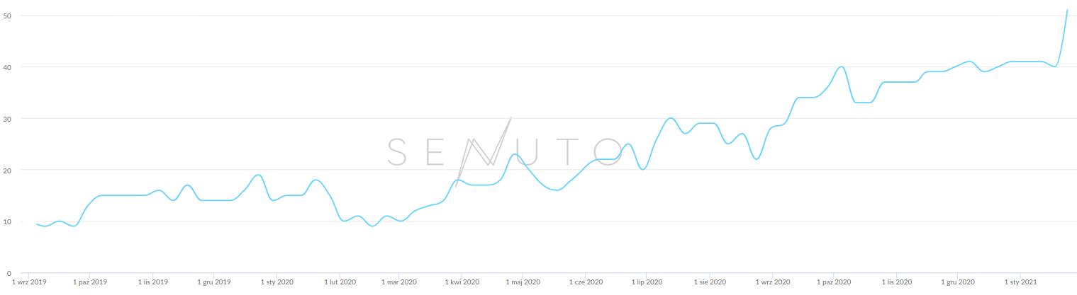 wzrost widoczności strony